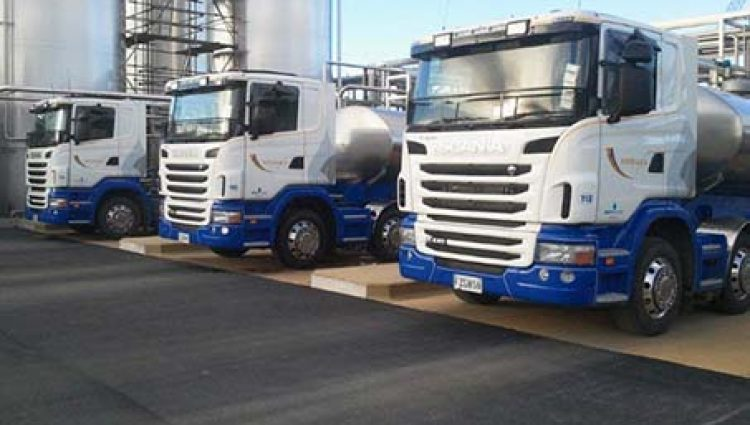 Second Only to Cows: The Logistics Industry and Dairy Farming