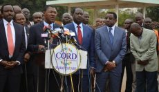 What Has CORD Been Up To? A Month in Review